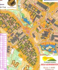 Map from Sprint final in Borl�nge
