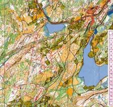 Trondheim Open, Middel