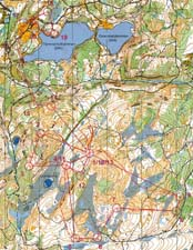 Trondheim Open, Middle