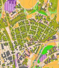 WOC-selection Sprint, Verdal
