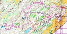 Relay training, Ronglan, Skogn