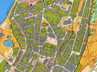 Maps from SM Sprint Final on Gotland
